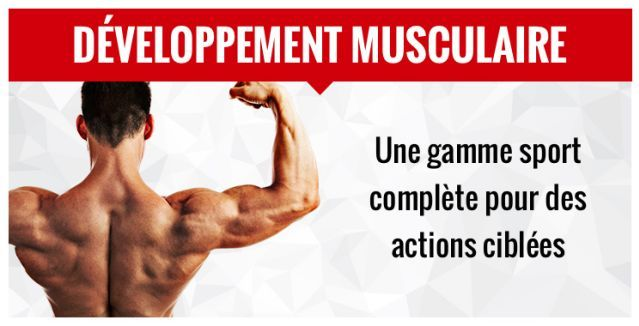 Eafit construction musculaire